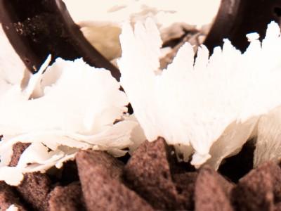 Mousse de ciocolata neagra si pere